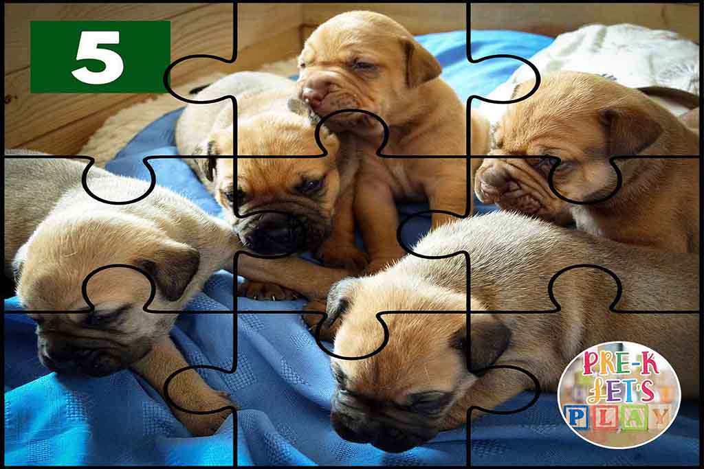 Puzzle of a group of puppies. Preschool fun for kids at home. This educational game is great for fine motor skills.