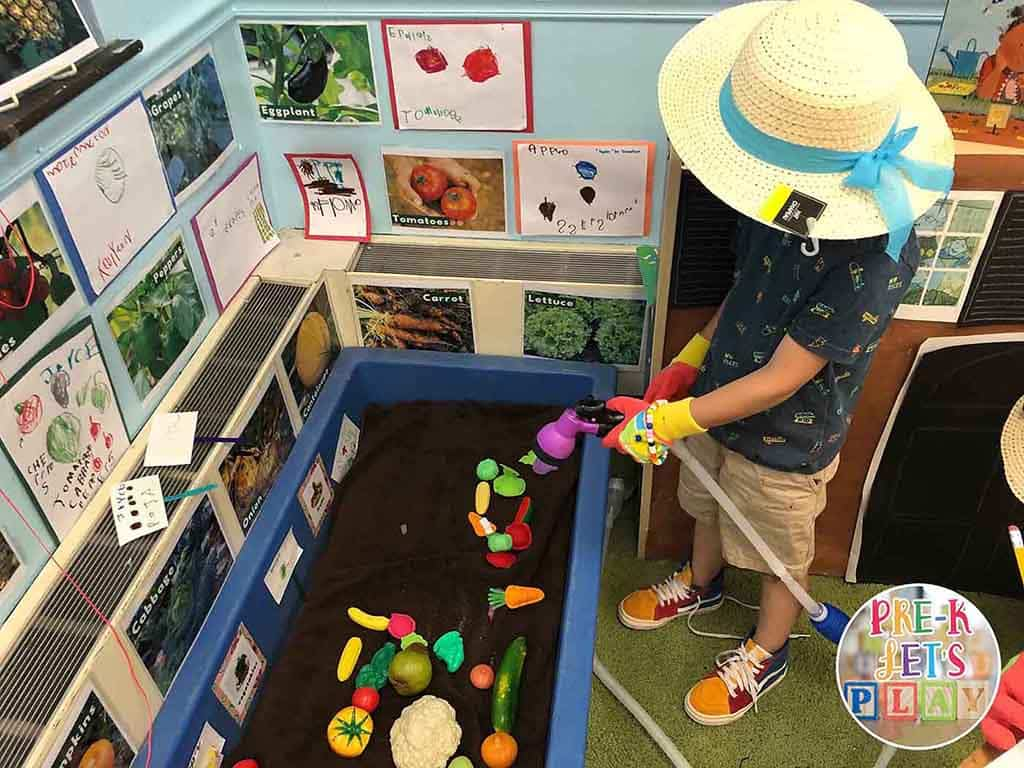 A student watering pretend food during pretend play. He is gardening and growing fruits and vegetables in this dramatic play garden center.