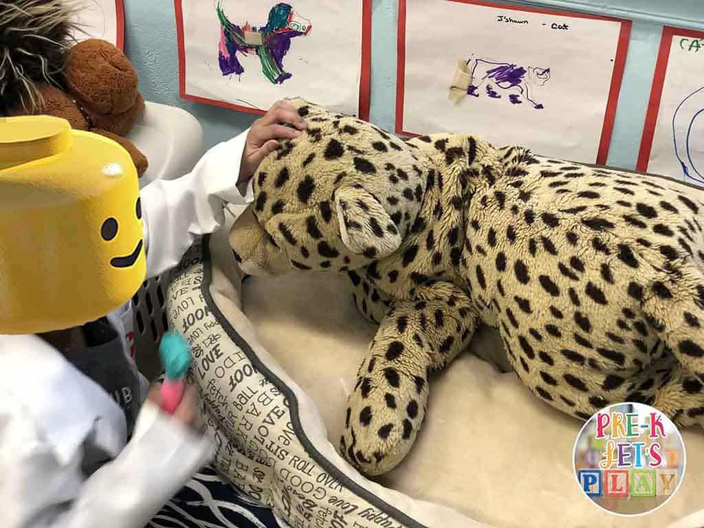 Student is pretending to be a veterinarian in the dramatic play area. She is performing a checkup on a stuffed animal for pretend play.