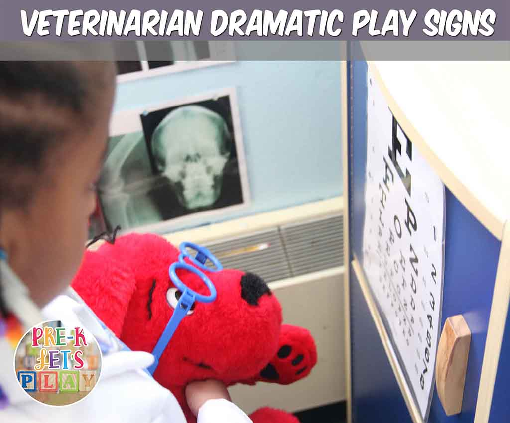 Student teaching stuffed animal dog how to read letters for pretend play. This eye chart is a sign that your students will love to use in the pet vet dramatic play center.
