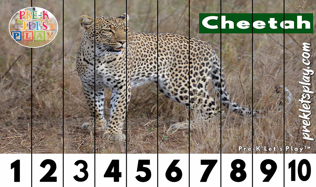 Preschool number strip puzzles of a cheetah for kids to practice counting from 1-10.