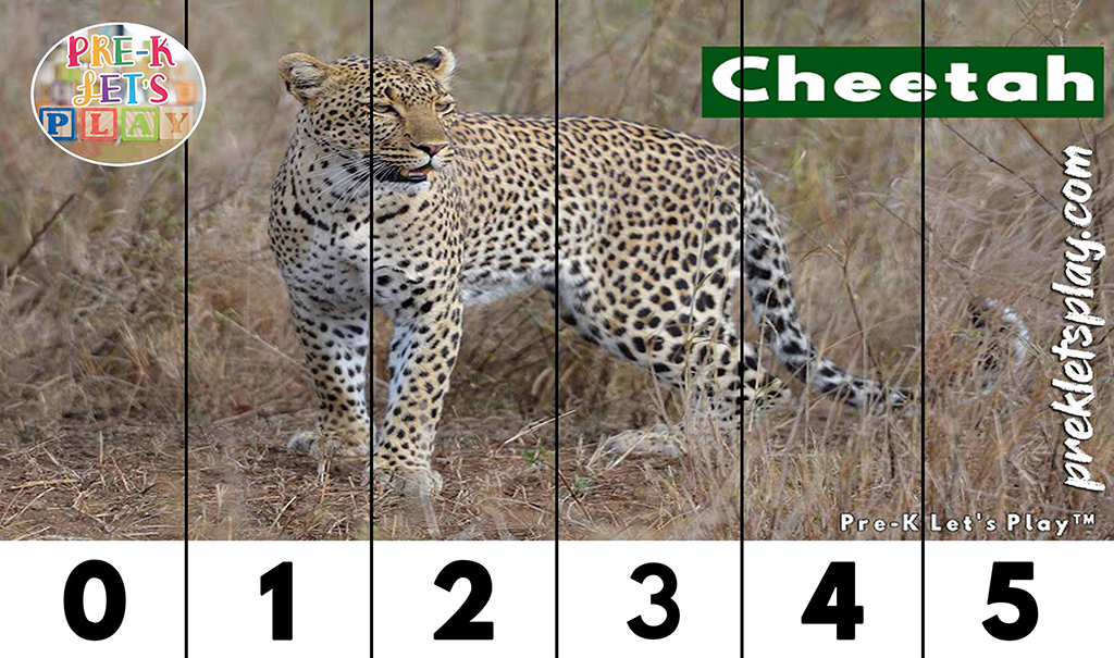 Preschool number strip puzzles of a cheetah for kids to practice counting from 0-5.