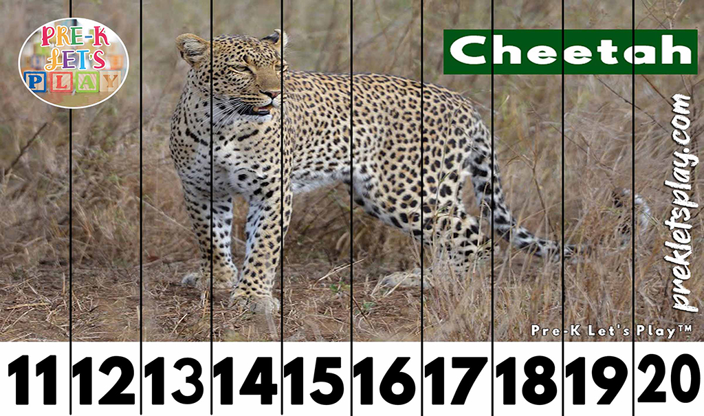 Preschool number strip puzzles of a cheetah for kids to practice counting from 11-20.