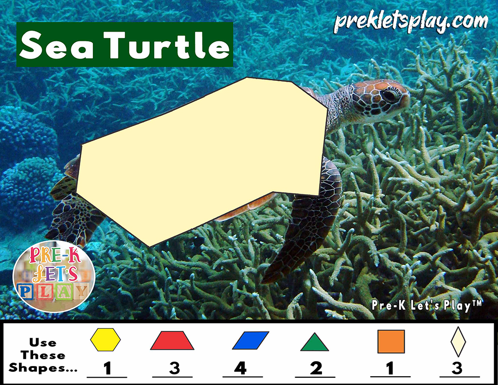 Sea turtle with a blank body outline of math pattern block templates