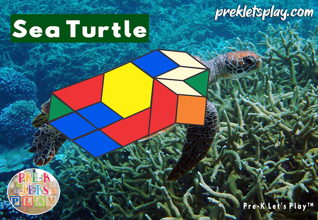 Sea turtle with the body made up of colored math block patterns