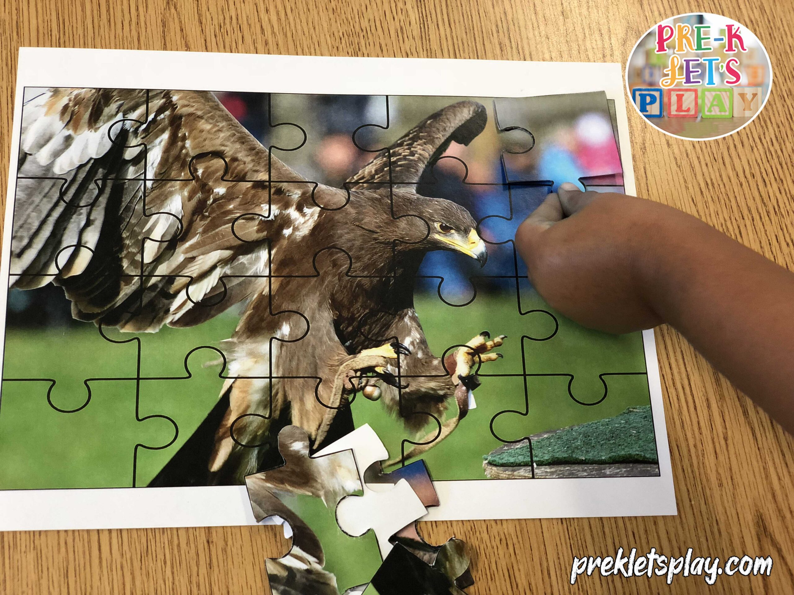 child playing with bird theme preschool puzzle activities.