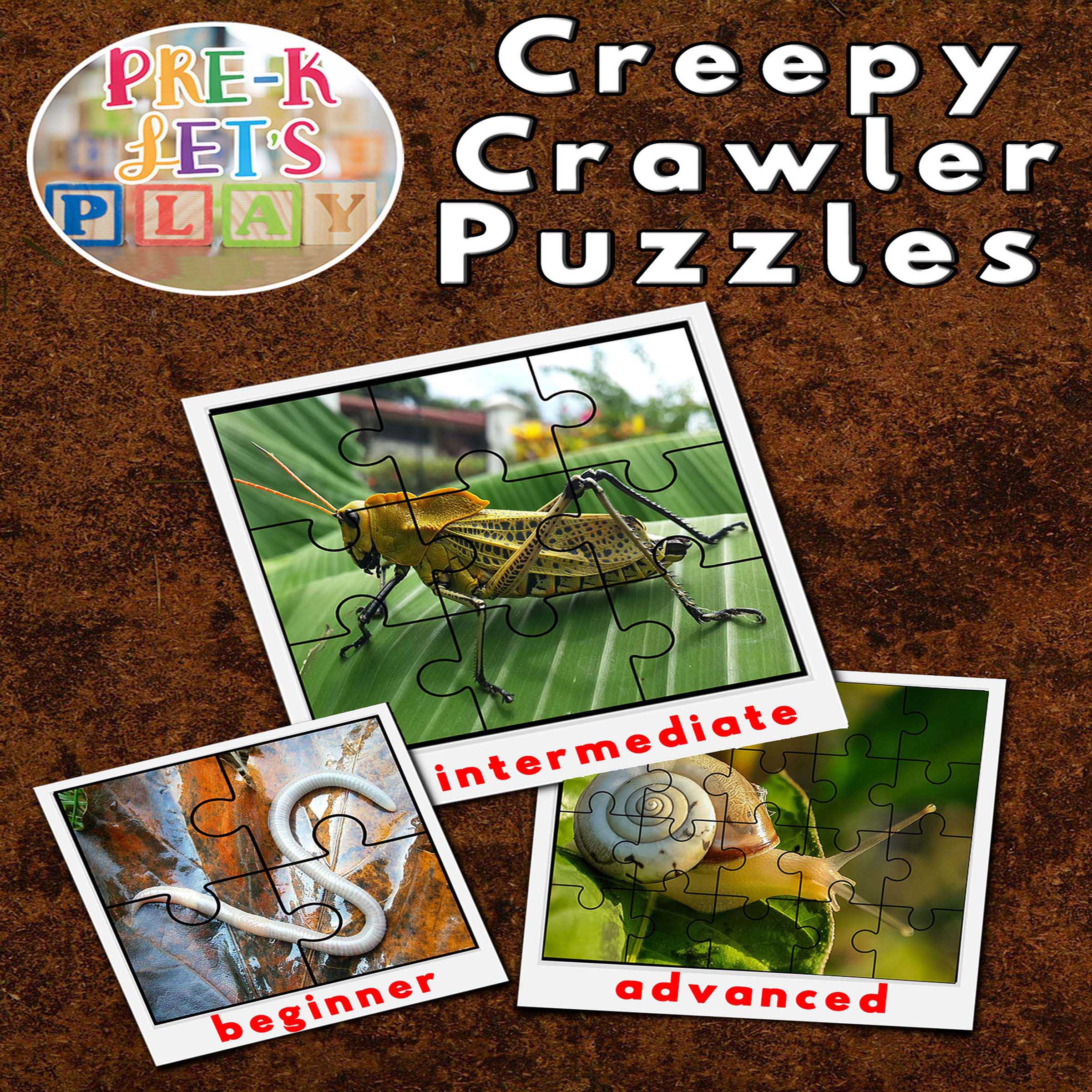 Cover of printable preschool puzzle activities. These picture puzzle theme is about creppy crawlers.