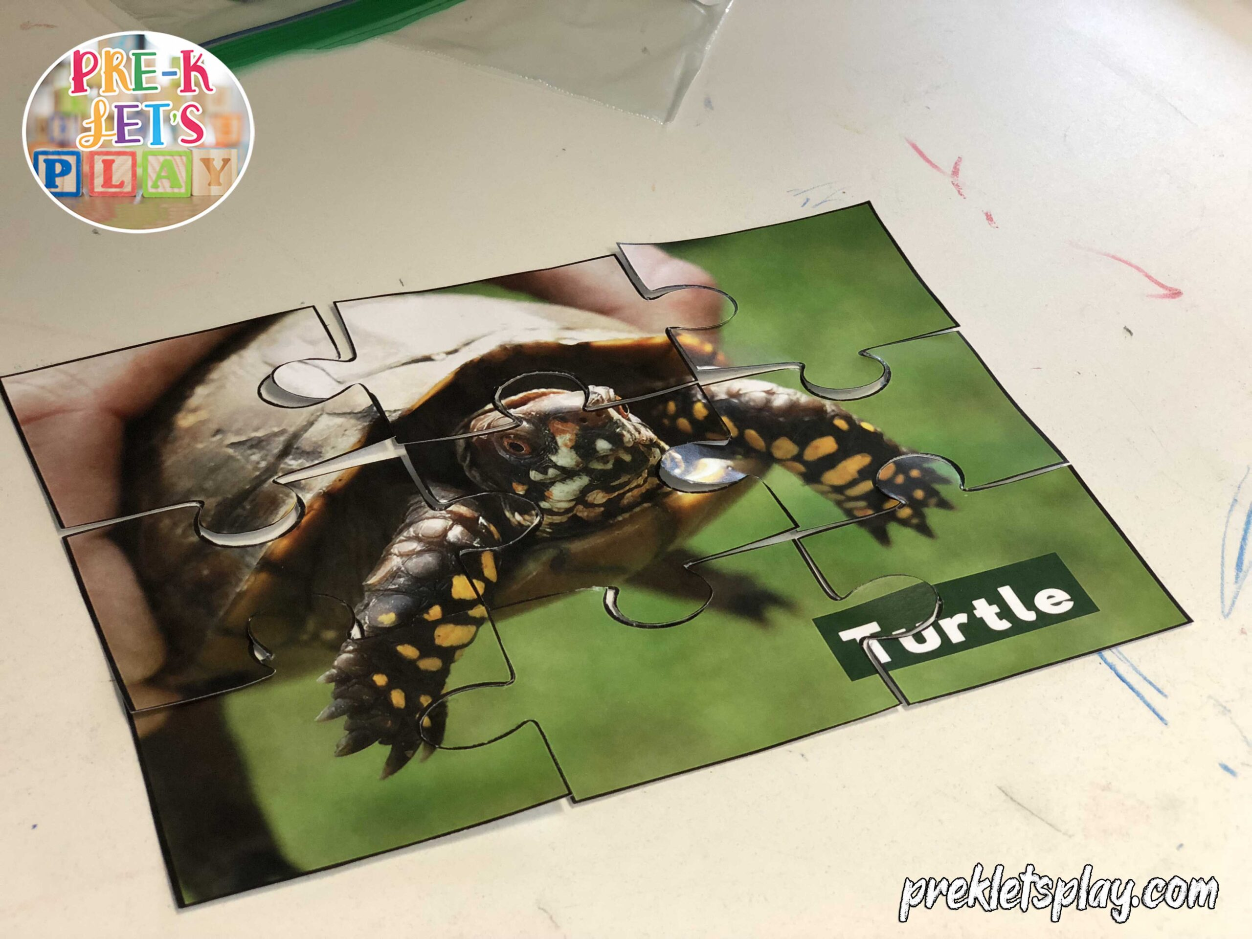 finished turtle home pet puzzle printable for preschool