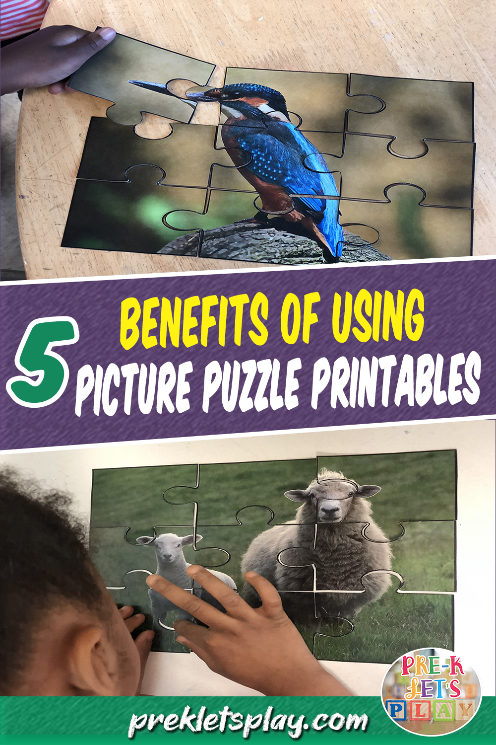 Picture Puzzles and its 5 benefits