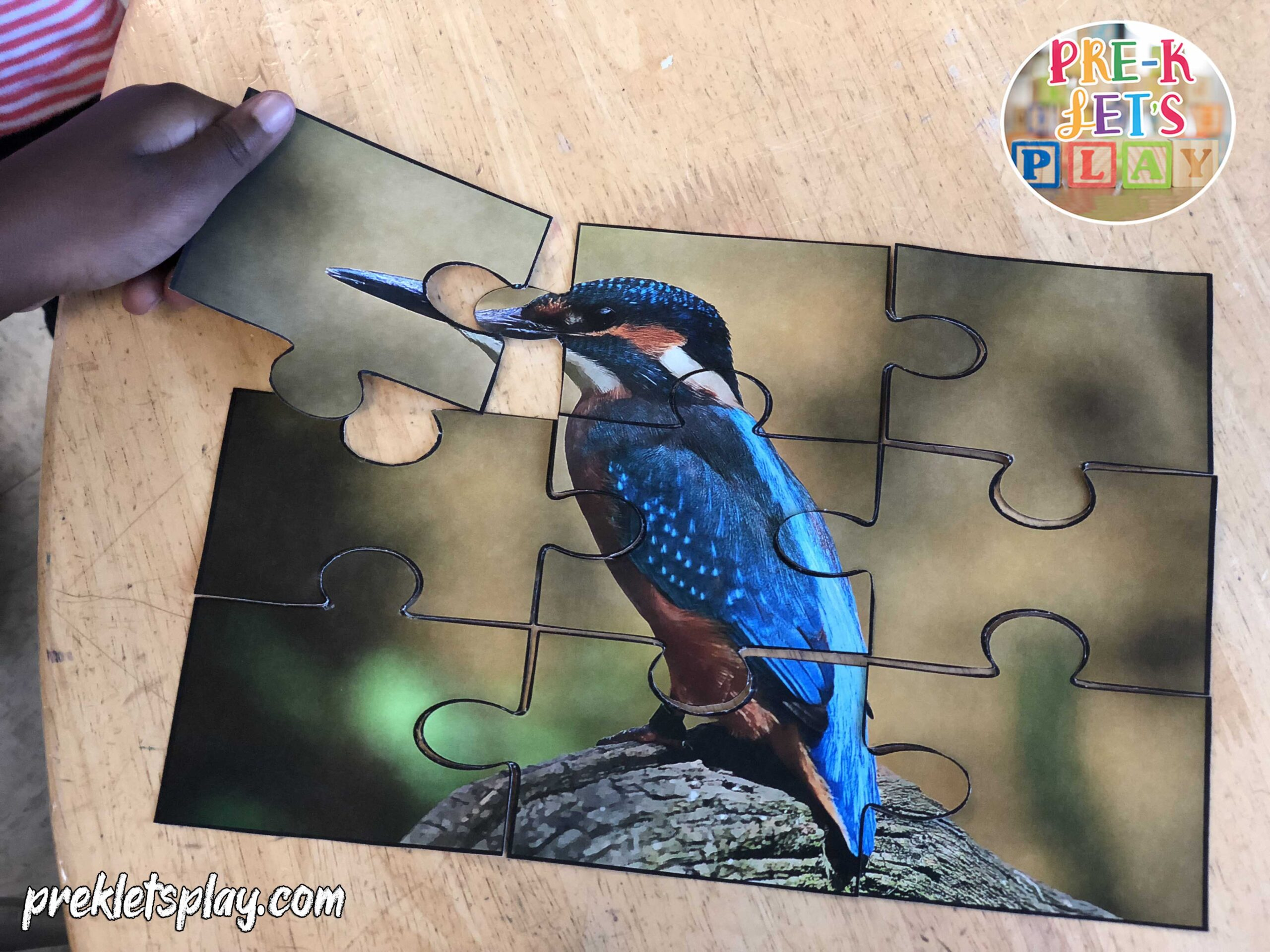 kids love playing with preschool puzzle printables. This is a bird theme printable activity.