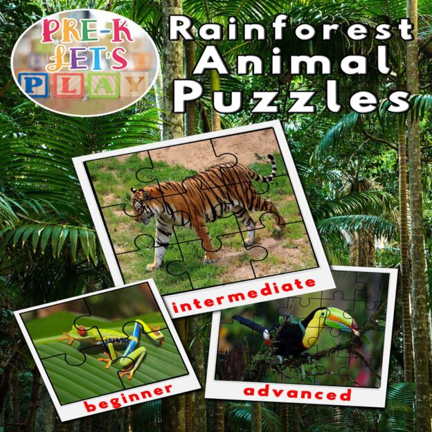 puzzle activities for preschool that focuses on the theme of rainforest animals